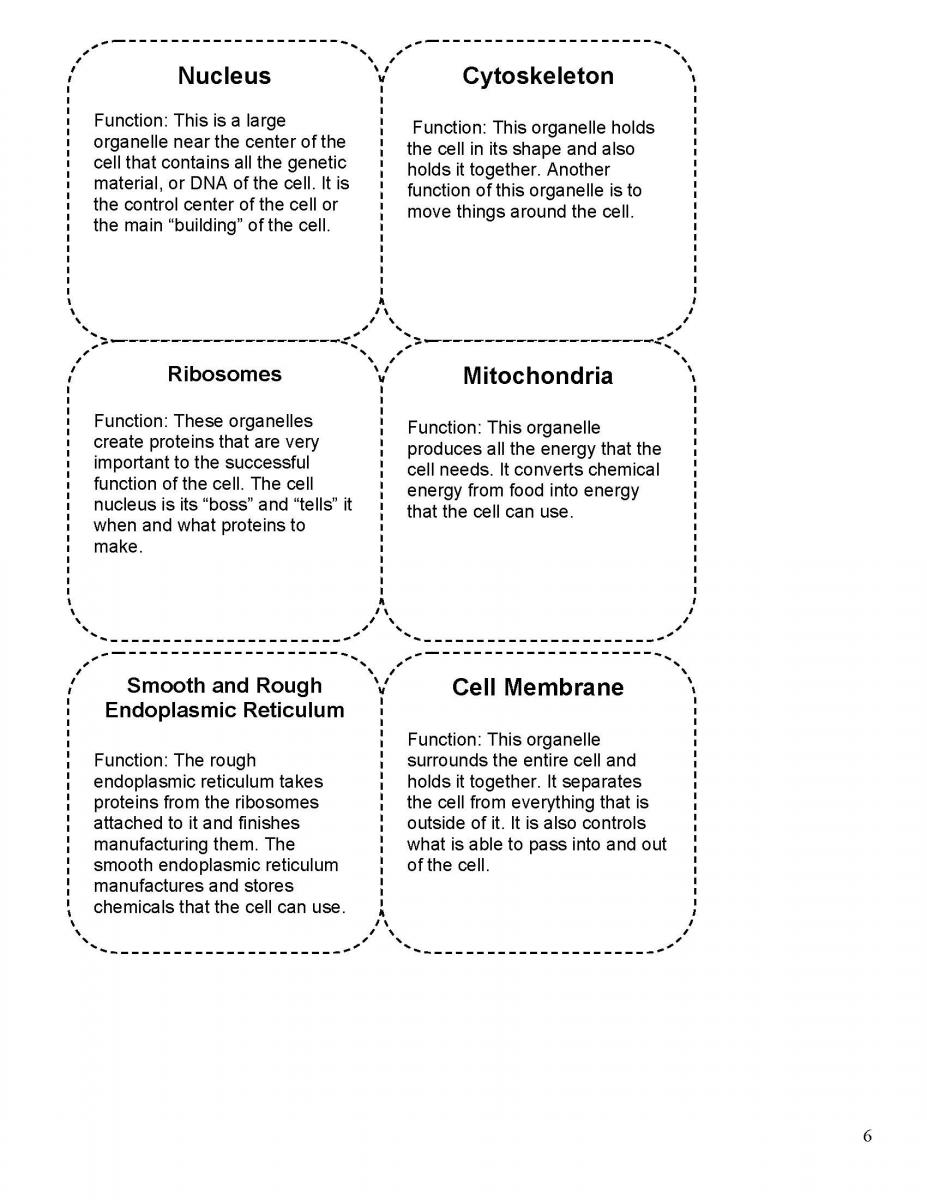 worksheet Cell City Worksheet Answers cell in the city center for nanoscale science right click on images to view and save full sized versions of graphics below or download cards as a pdf